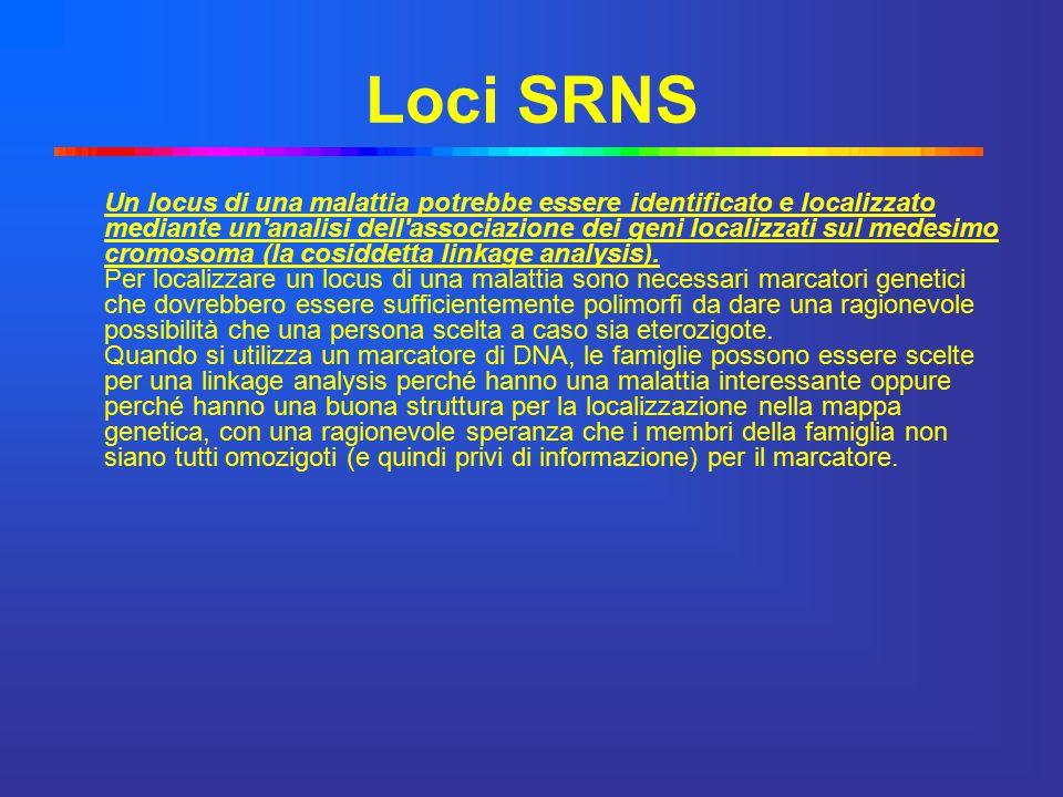 Loci SRNS Un locus di una malattia potrebbe essere identificato e localizzato mediante un'analisi dell'associazione dei geni localizzati sul medesimo