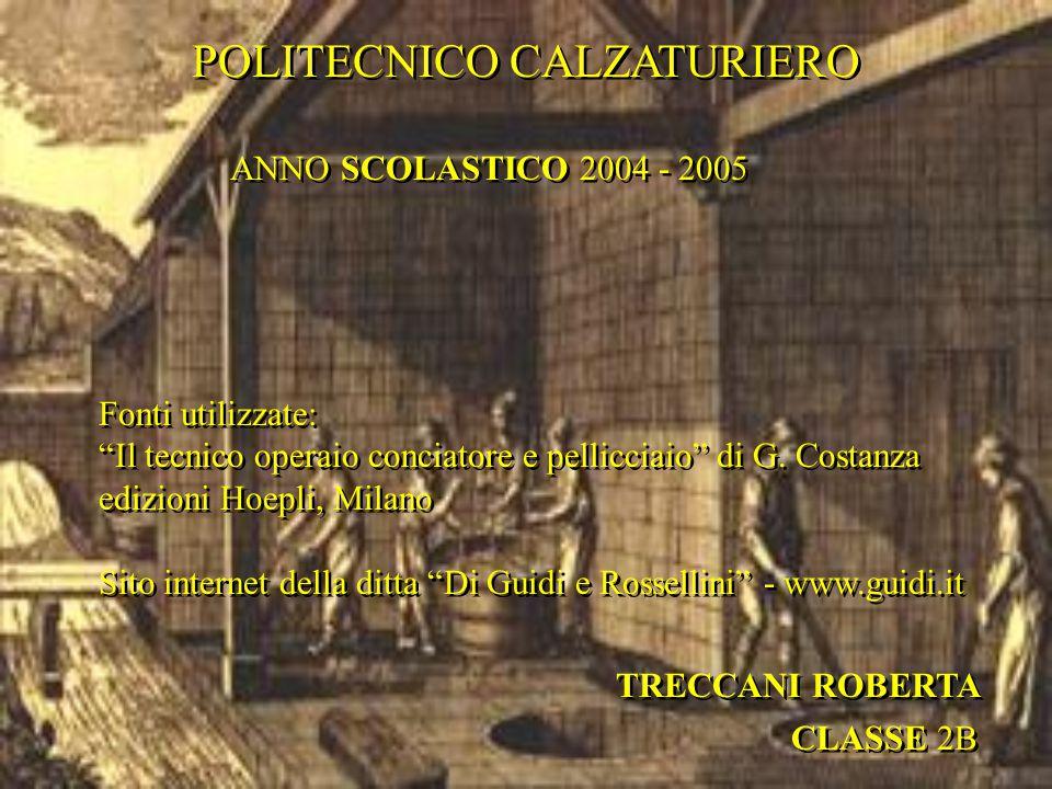 """POLITECNICO CALZATURIERO CLASSE 2B TRECCANI ROBERTA ANNO SCOLASTICO 2004 - 2005 Fonti utilizzate: """"Il tecnico operaio conciatore e pellicciaio"""" di G."""