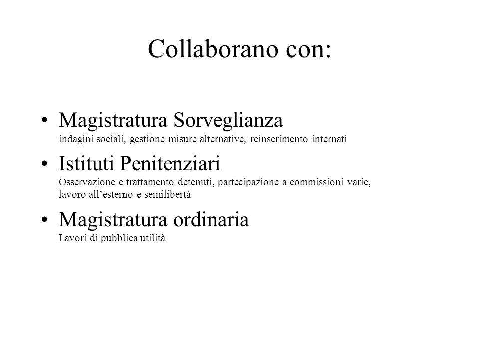 Collaborano con: Magistratura Sorveglianza indagini sociali, gestione misure alternative, reinserimento internati Istituti Penitenziari Osservazione e