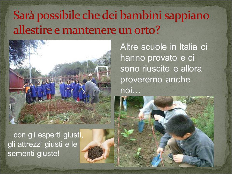 Altre scuole in Italia ci hanno provato e ci sono riuscite e allora proveremo anche noi… … con gli esperti giusti, gli attrezzi giusti e le sementi giuste!