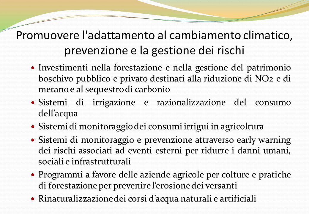 Promuovere l'adattamento al cambiamento climatico, prevenzione e la gestione dei rischi Investimenti nella forestazione e nella gestione del patrimoni