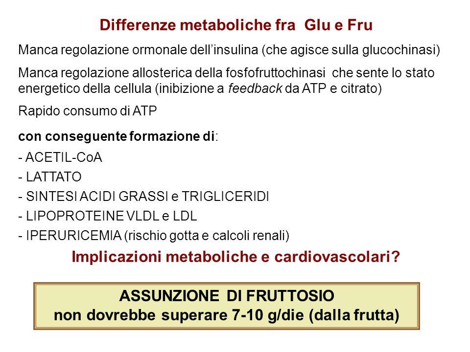 Differenze metaboliche fra Glu e Fru Manca regolazione ormonale dell'insulina (che agisce sulla glucochinasi) Manca regolazione allosterica della fosf