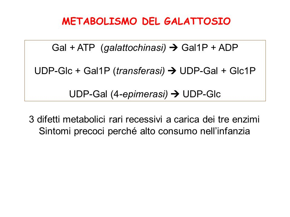 Gal + ATP (galattochinasi)  Gal1P + ADP UDP-Glc + Gal1P (transferasi)  UDP-Gal + Glc1P UDP-Gal (4-epimerasi)  UDP-Glc 3 difetti metabolici rari rec