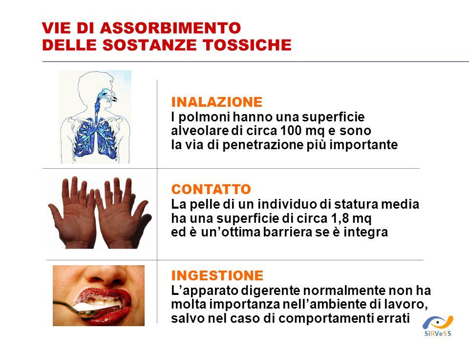 VIE DI ASSORBIMENTO DELLE SOSTANZE TOSSICHE INALAZIONE I polmoni hanno una superficie alveolare di circa 100 mq e sono la via di penetrazione più impo