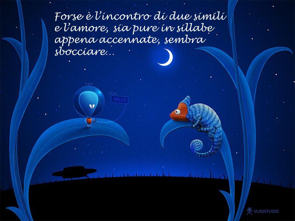 La fantasia corre lontano e non si sa più se è sogno o realtà!