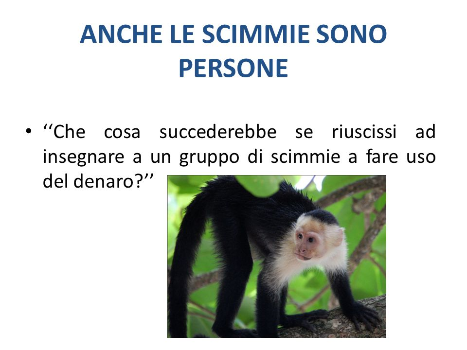 ANCHE LE SCIMMIE SONO PERSONE ''Che cosa succederebbe se riuscissi ad insegnare a un gruppo di scimmie a fare uso del denaro?''