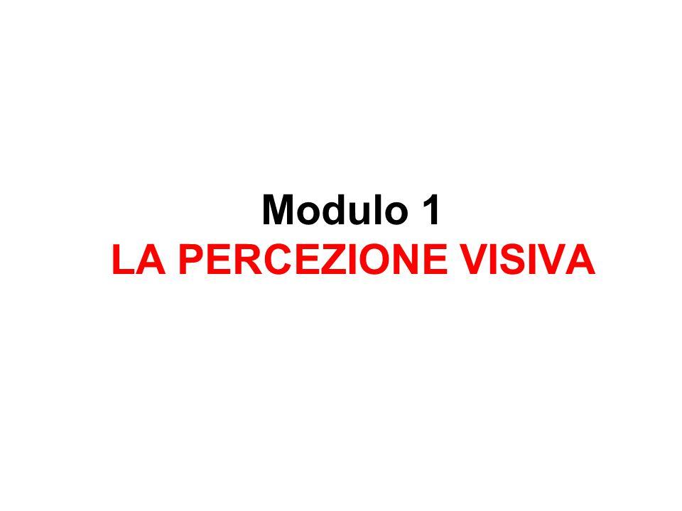 Modulo 1 LA PERCEZIONE VISIVA