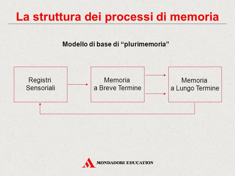 """La struttura dei processi di memoria Modello di base di """"plurimemoria"""" Memoria a Breve Termine Memoria a Lungo Termine Registri Sensoriali"""