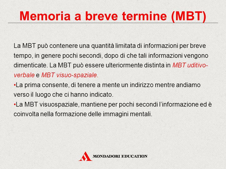La MBT può contenere una quantità limitata di informazioni per breve tempo, in genere pochi secondi, dopo di che tali informazioni vengono dimenticate