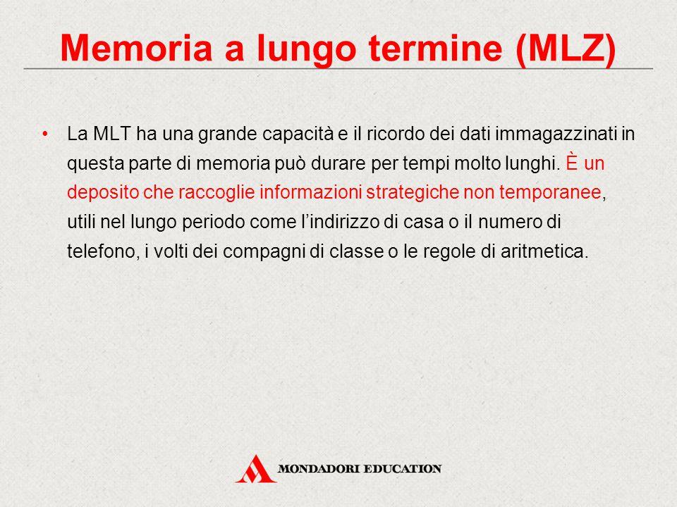 La MLT ha una grande capacità e il ricordo dei dati immagazzinati in questa parte di memoria può durare per tempi molto lunghi. È un deposito che racc