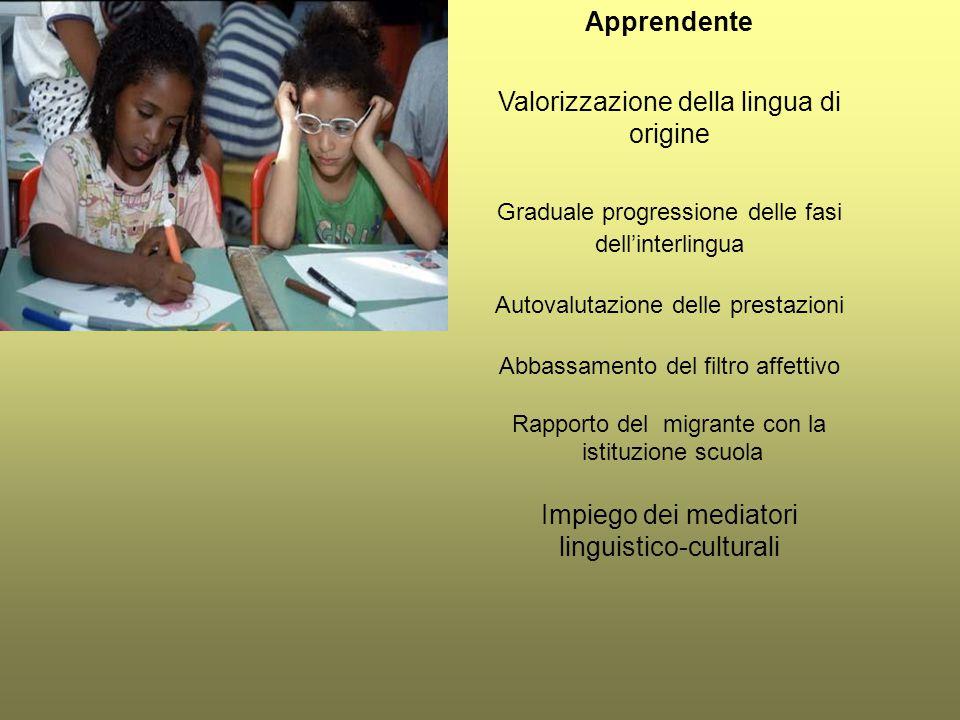 Apprendente Valorizzazione della lingua di origine Graduale progressione delle fasi dell'interlingua Autovalutazione delle prestazioni Abbassamento de