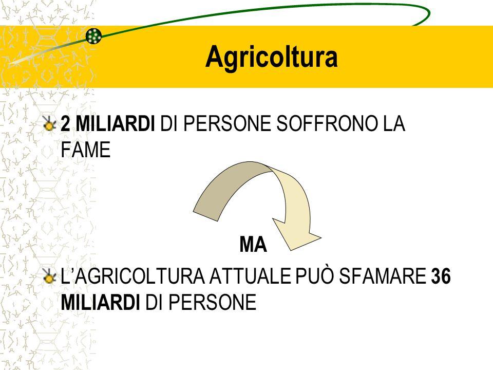 Agricoltura 2 MILIARDI DI PERSONE SOFFRONO LA FAME MA L'AGRICOLTURA ATTUALE PUÒ SFAMARE 36 MILIARDI DI PERSONE