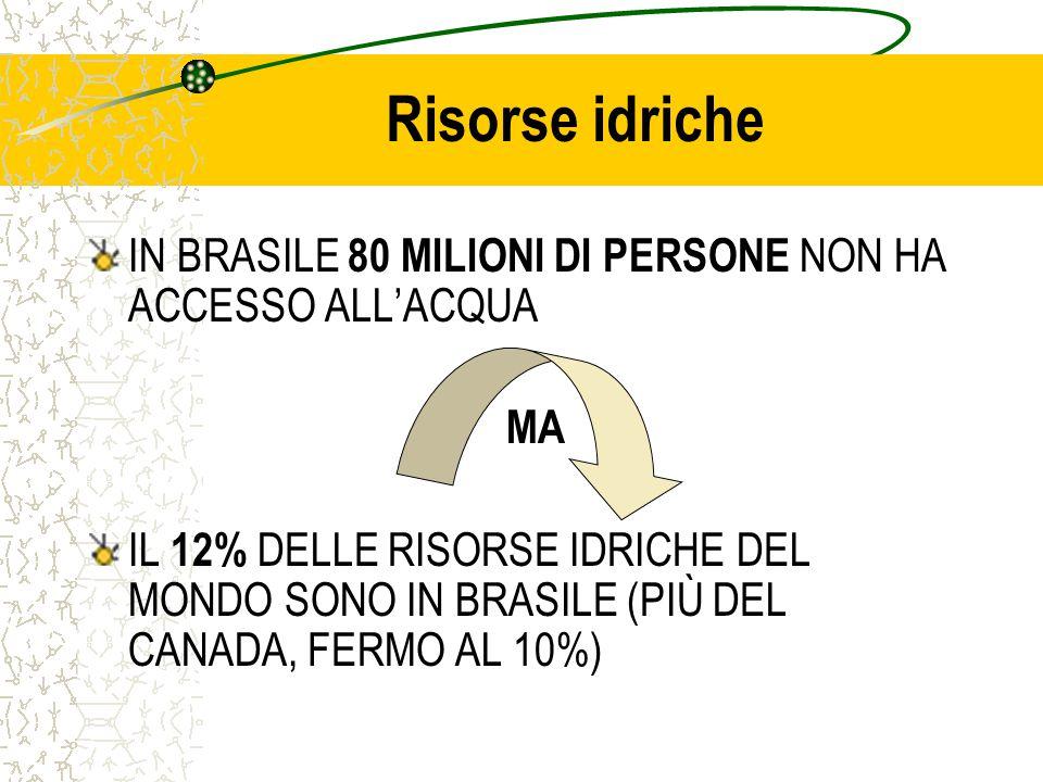 Risorse idriche IN BRASILE 80 MILIONI DI PERSONE NON HA ACCESSO ALL'ACQUA MA IL 12% DELLE RISORSE IDRICHE DEL MONDO SONO IN BRASILE (PIÙ DEL CANADA, FERMO AL 10%)