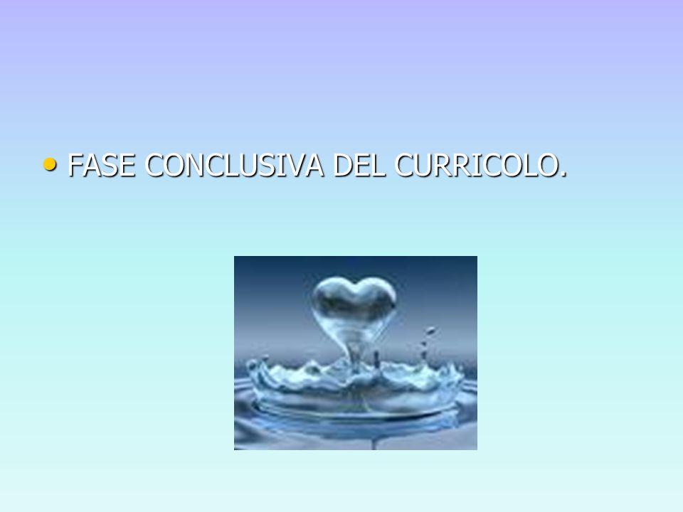 FASE CONCLUSIVA DEL CURRICOLO. FASE CONCLUSIVA DEL CURRICOLO.