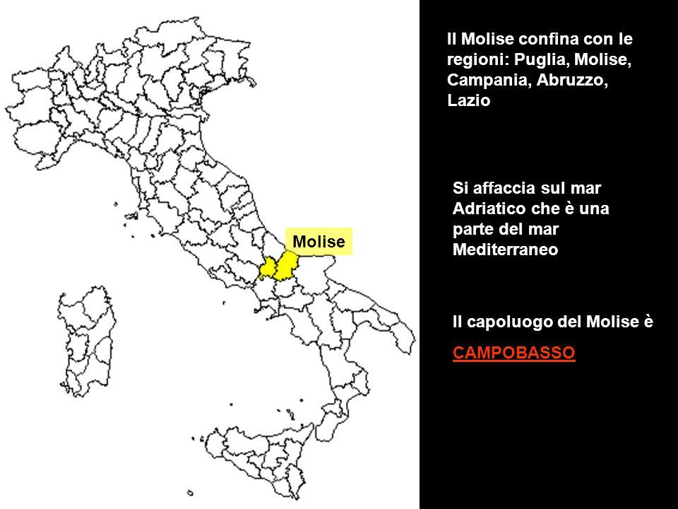 Molise Il Molise confina con le regioni: Puglia, Molise, Campania, Abruzzo, Lazio Si affaccia sul mar Adriatico che è una parte del mar Mediterraneo I