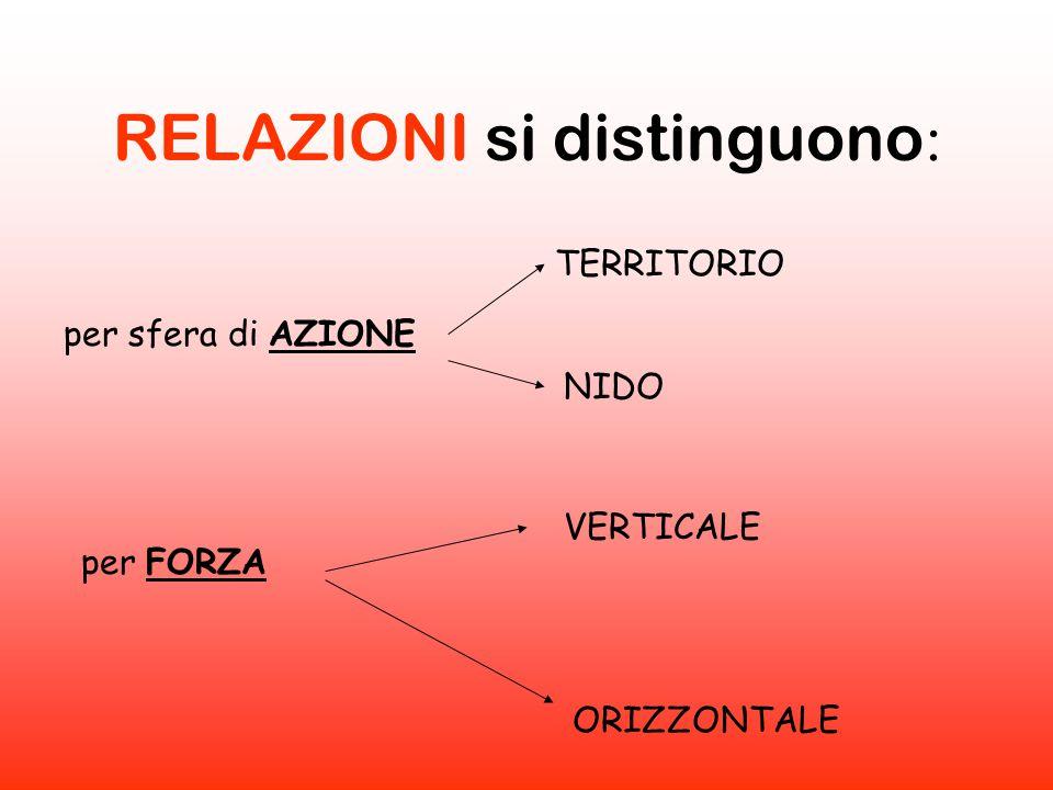 RELAZIONI si distinguono : per sfera di AZIONE per FORZA VERTICALE ORIZZONTALE TERRITORIO NIDO