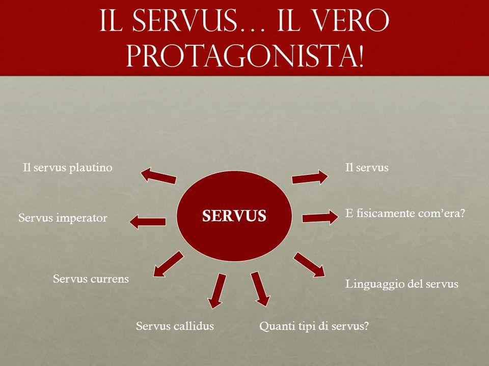 SERVUS E fisicamente com'era? Linguaggio del servus Quanti tipi di servus?Servus callidus Servus currens Servus imperator Il servus plautinoIl servus