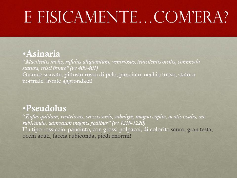 "E FISICAMENTE…COM'ERA? Asinaria "" Macilentis molis, rufulus aliquantum, ventriosus, truculentis oculis, commoda statura, tristi fronte"" (vv 400-401) G"