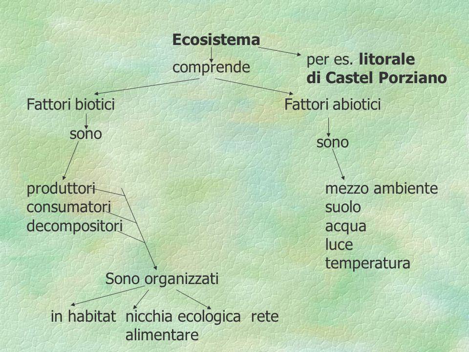 Ecosistema comprende per es. litorale di Castel Porziano Fattori biotici sono produttori consumatori decompositori Sono organizzati in habitat nicchia