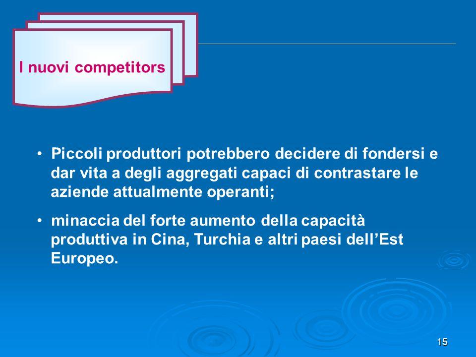 15 I nuovi competitors Piccoli produttori potrebbero decidere di fondersi e dar vita a degli aggregati capaci di contrastare le aziende attualmente operanti; minaccia del forte aumento della capacità produttiva in Cina, Turchia e altri paesi dell'Est Europeo.
