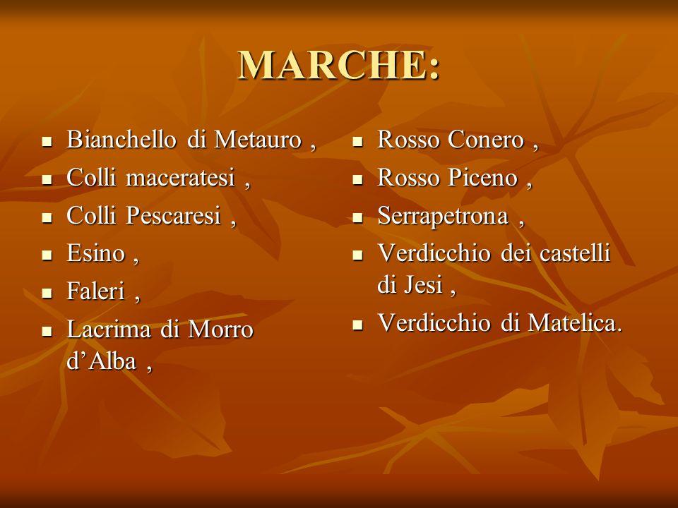 MARCHE: Bianchello di Metauro, Bianchello di Metauro, Colli maceratesi, Colli maceratesi, Colli Pescaresi, Colli Pescaresi, Esino, Esino, Faleri, Fale