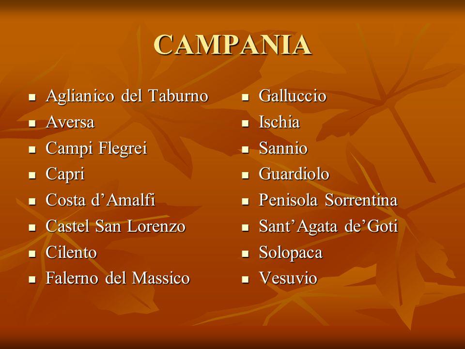 CAMPANIA Aglianico del Taburno Aglianico del Taburno Aversa Aversa Campi Flegrei Campi Flegrei Capri Capri Costa d'Amalfi Costa d'Amalfi Castel San Lo