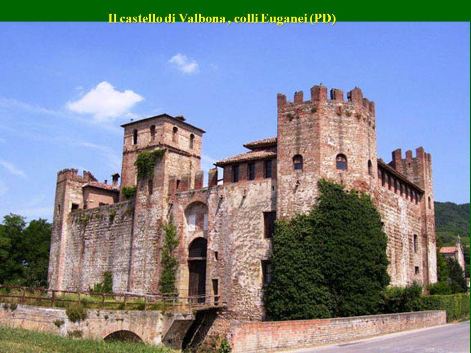Il Castello Del Monte di Andria ( Puglia ) Il Castello Del Monte di Andria ( Puglia )