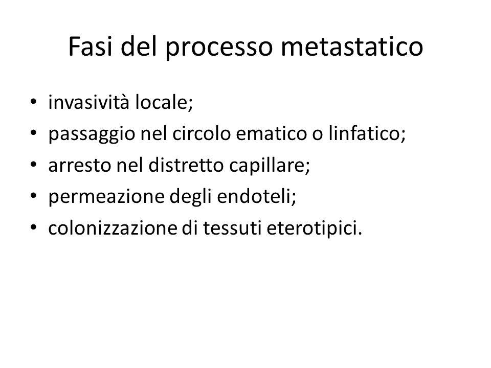 Fasi del processo metastatico invasività locale; passaggio nel circolo ematico o linfatico; arresto nel distretto capillare; permeazione degli endotel