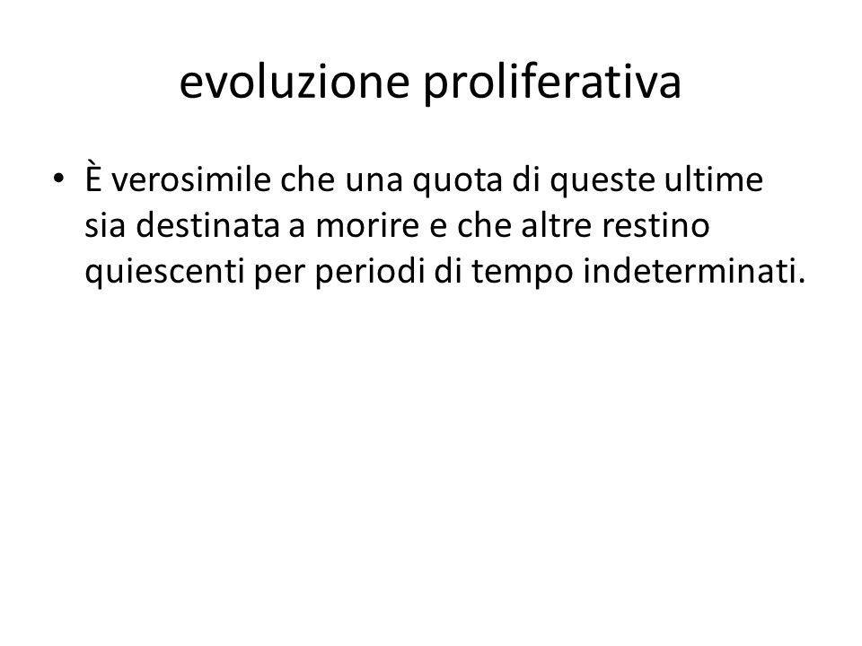 evoluzione proliferativa È verosimile che una quota di queste ultime sia destinata a morire e che altre restino quiescenti per periodi di tempo indete