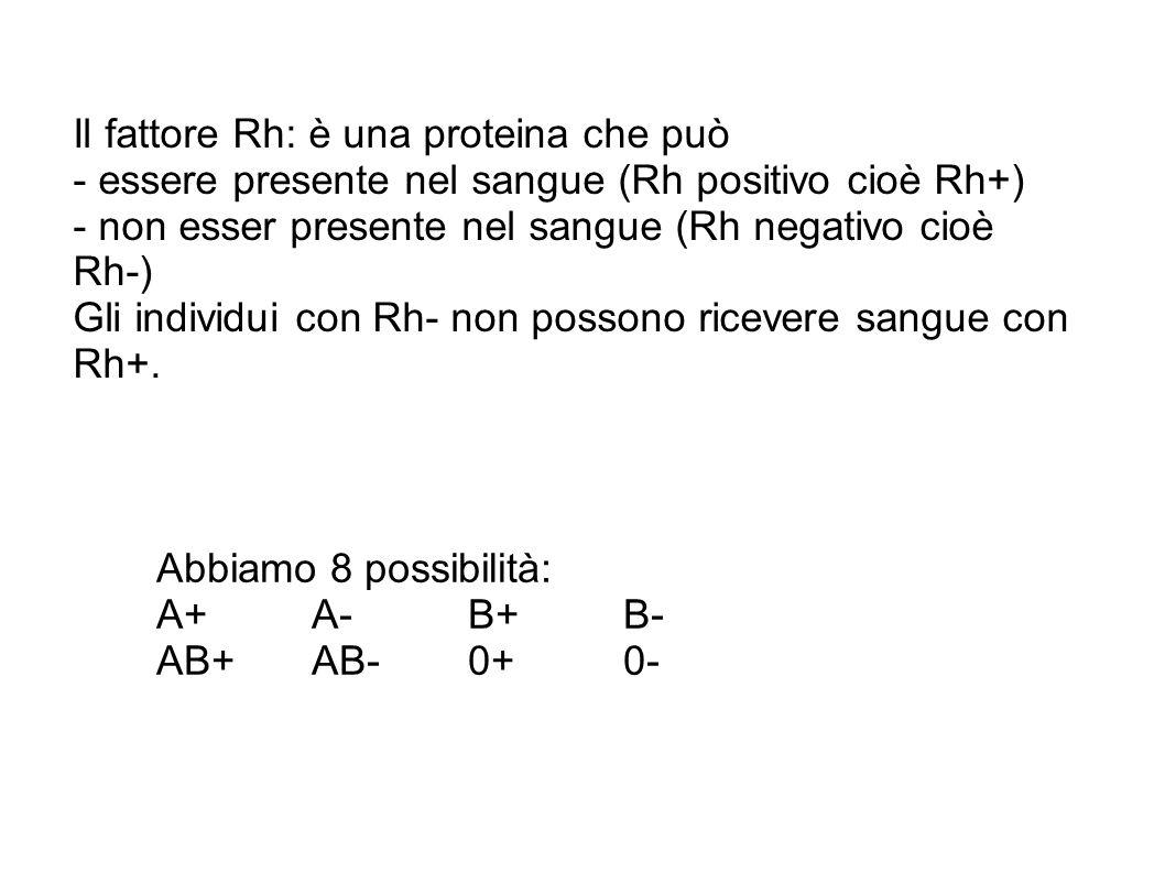Il fattore Rh: è una proteina che può - essere presente nel sangue (Rh positivo cioè Rh+) - non esser presente nel sangue (Rh negativo cioè Rh-) Gli individui con Rh- non possono ricevere sangue con Rh+.