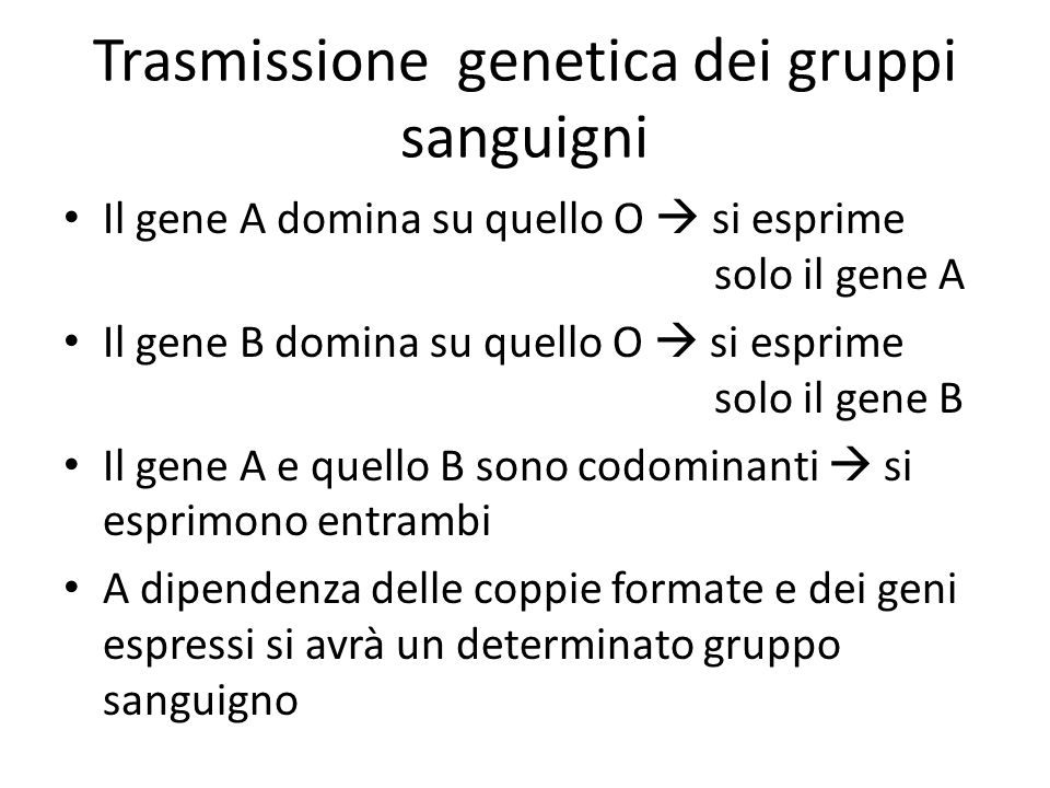 Trasmissione genetica dei gruppi sanguigni Il gene A domina su quello O  si esprime solo il gene A Il gene B domina su quello O  si esprime solo il gene B Il gene A e quello B sono codominanti  si esprimono entrambi A dipendenza delle coppie formate e dei geni espressi si avrà un determinato gruppo sanguigno