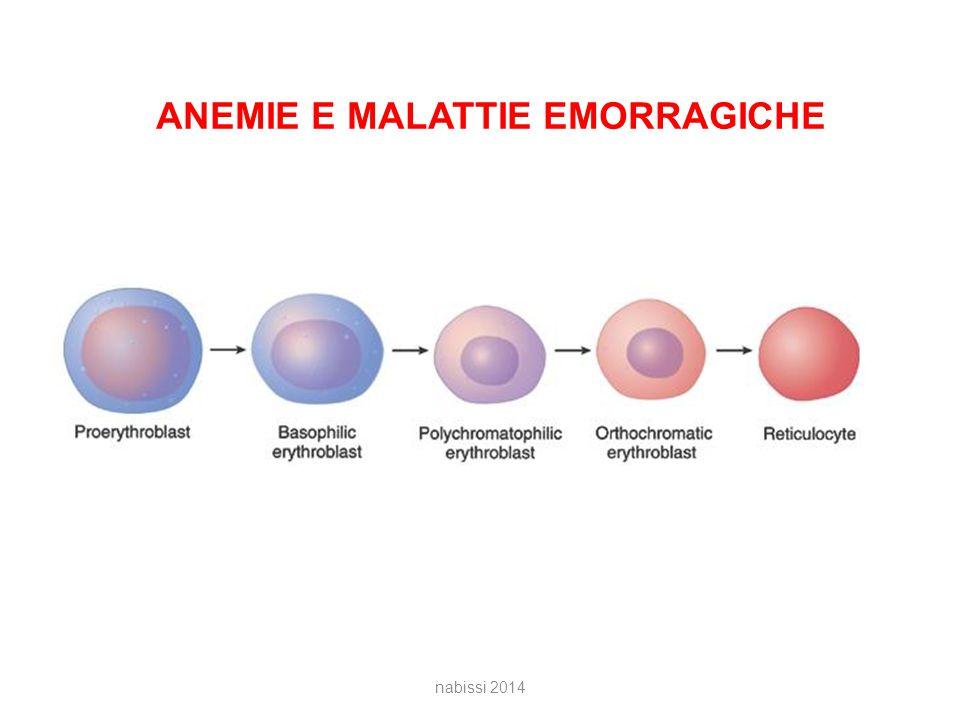 ANEMIE E MALATTIE EMORRAGICHE nabissi 2014