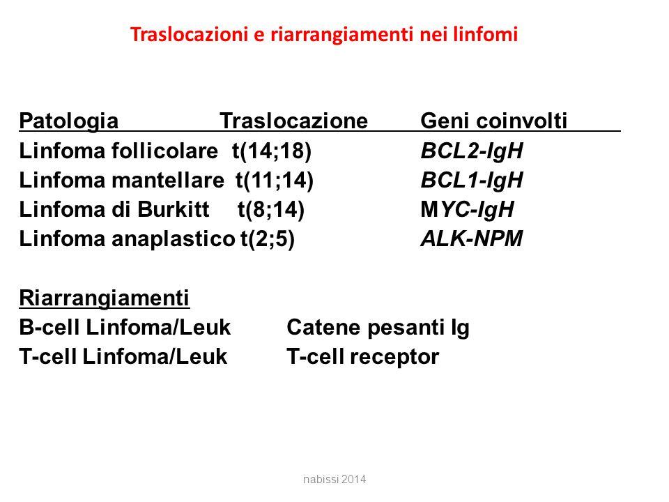 Traslocazioni e riarrangiamenti nei linfomi PatologiaTraslocazioneGeni coinvolti Linfoma follicolare t(14;18)BCL2-IgH Linfoma mantellare t(11;14)BCL1-IgH Linfoma di Burkitt t(8;14)MYC-IgH Linfoma anaplastico t(2;5)ALK-NPM Riarrangiamenti B-cell Linfoma/LeukCatene pesanti Ig T-cell Linfoma/LeukT-cell receptor nabissi 2014
