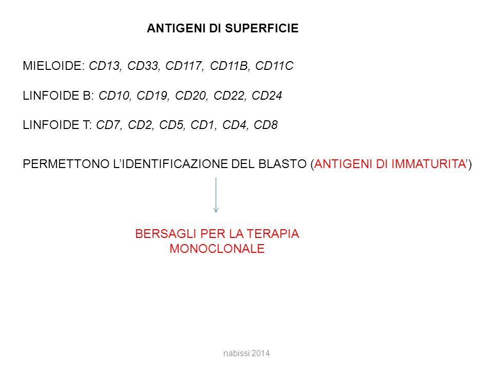 ANTIGENI DI SUPERFICIE MIELOIDE: CD13, CD33, CD117, CD11B, CD11C LINFOIDE B: CD10, CD19, CD20, CD22, CD24 LINFOIDE T: CD7, CD2, CD5, CD1, CD4, CD8 PERMETTONO L'IDENTIFICAZIONE DEL BLASTO (ANTIGENI DI IMMATURITA') BERSAGLI PER LA TERAPIA MONOCLONALE nabissi 2014