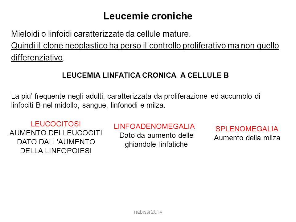 Leucemie croniche Mieloidi o linfoidi caratterizzate da cellule mature.