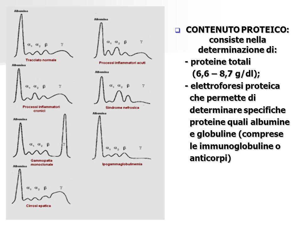  CONTENUTO PROTEICO: consiste nella determinazione di: - proteine totali - proteine totali (6,6 – 8,7 g/dl); (6,6 – 8,7 g/dl); - elettroforesi protei