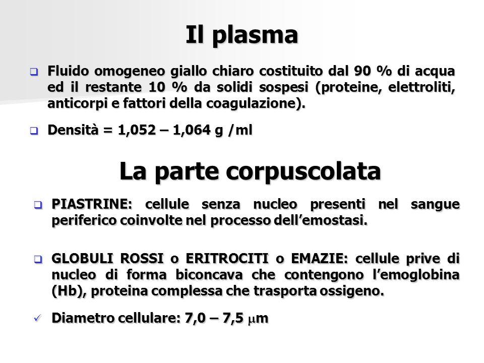 Il plasma  Fluido omogeneo giallo chiaro costituito dal 90 % di acqua ed il restante 10 % da solidi sospesi (proteine, elettroliti, anticorpi e fatto