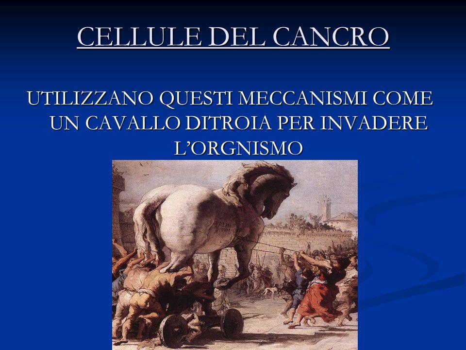 CELLULE DEL CANCRO UTILIZZANO QUESTI MECCANISMI COME UN CAVALLO DITROIA PER INVADERE L'ORGNISMO