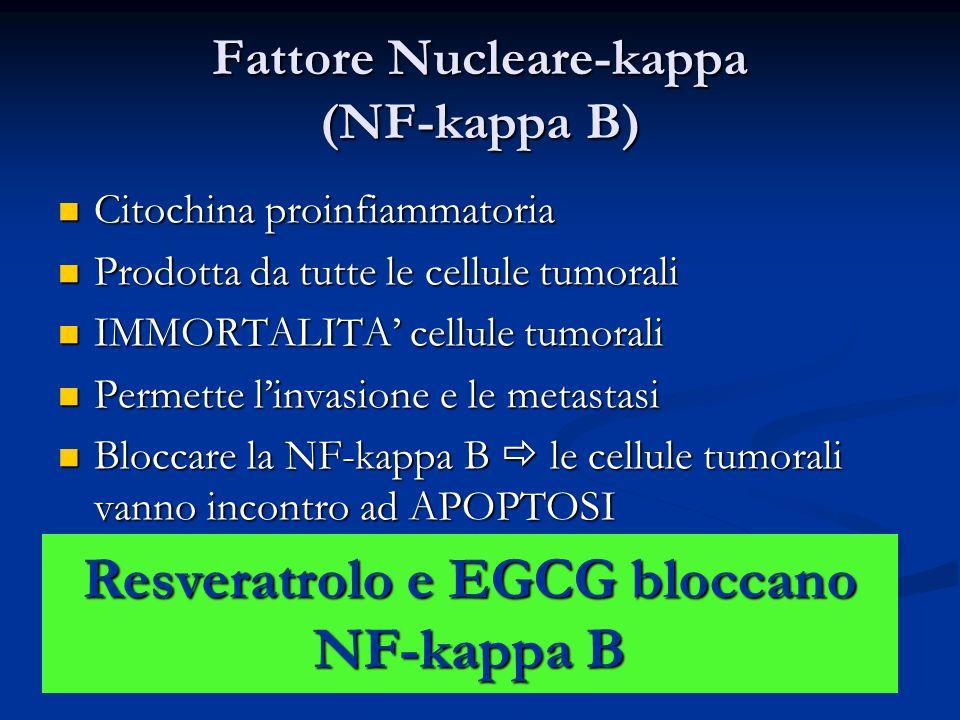 Fattore Nucleare-kappa (NF-kappa B) Citochina proinfiammatoria Citochina proinfiammatoria Prodotta da tutte le cellule tumorali Prodotta da tutte le c