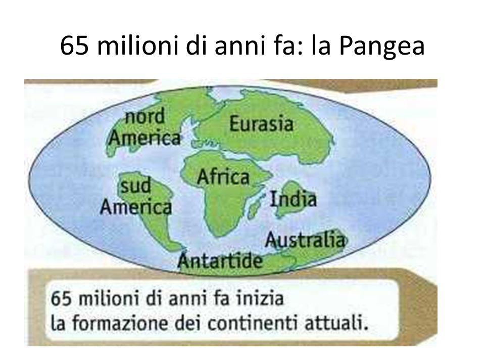 65 milioni di anni fa: la Pangea