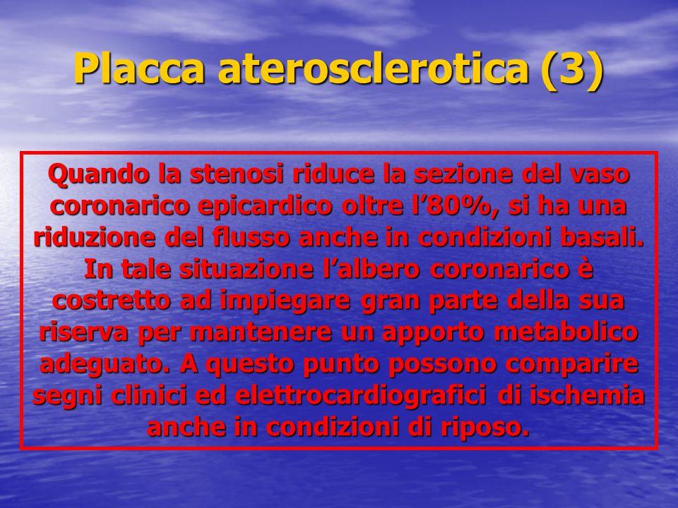 Quando la stenosi riduce la sezione del vaso coronarico epicardico oltre l'80%, si ha una riduzione del flusso anche in condizioni basali. In tale sit