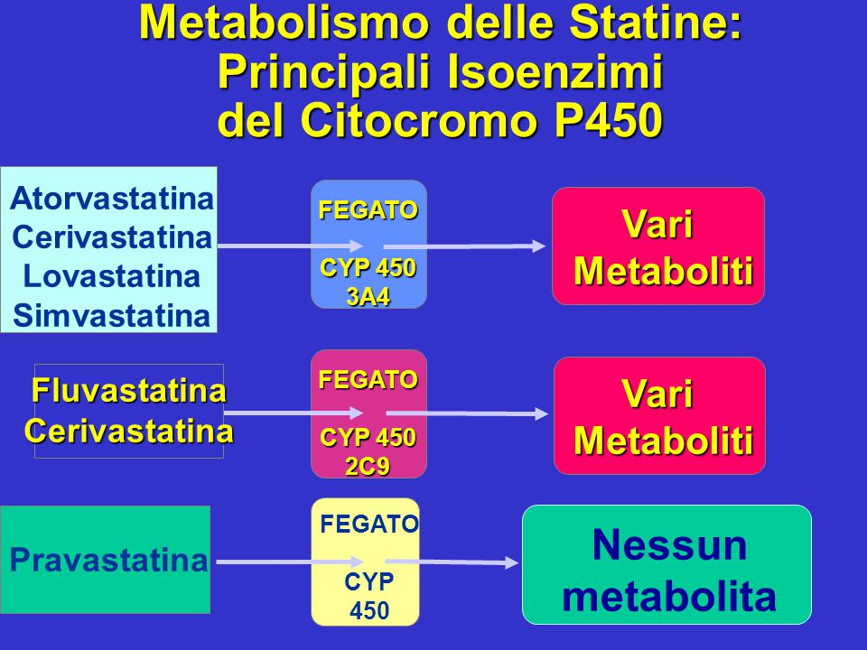Atorvastatina Cerivastatina Lovastatina Simvastatina FEGATO CYP 450 3A4 FluvastatinaCerivastatina FEGATO 2C9 Vari Metaboliti Metaboliti Pravastatina M