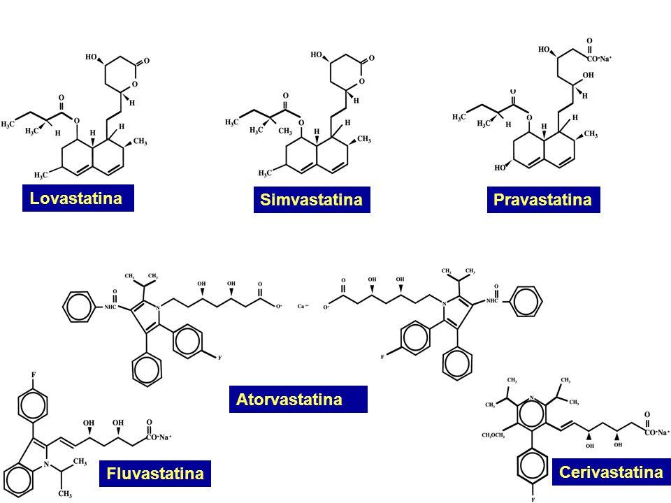 InfiammazioneRiparazione Placca instabile Aumento dei lipidi Ossidazione lipidica Infezioni.