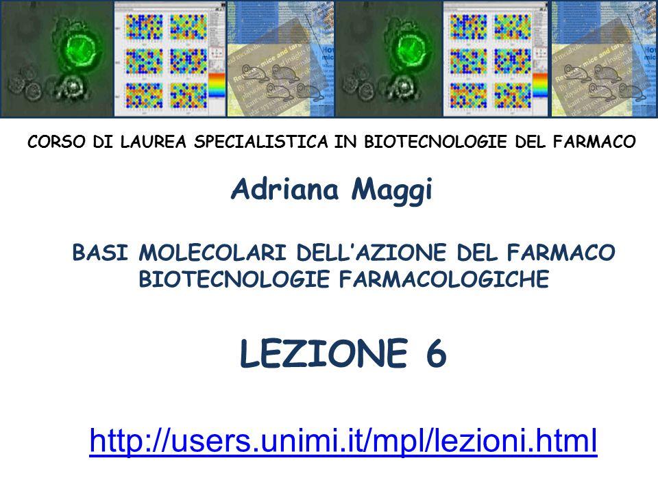 BASI MOLECOLARI DELL'AZIONE DEL FARMACO BIOTECNOLOGIE FARMACOLOGICHE LEZIONE 6 CORSO DI LAUREA SPECIALISTICA IN BIOTECNOLOGIE DEL FARMACO Adriana Maggi http://users.unimi.it/mpl/lezioni.html