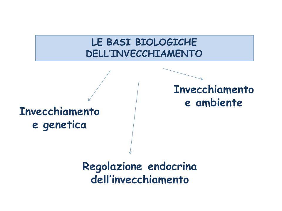 LE BASI BIOLOGICHE DELL'INVECCHIAMENTO Invecchiamento e genetica Regolazione endocrina dell'invecchiamento Invecchiamento e ambiente