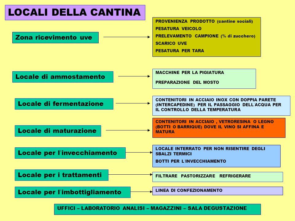 PROVENIENZA PRODOTTO (cantine sociali) PESATURA VEICOLO PRELEVAMENTO CAMPIONE (% di zucchero) SCARICO UVE PESATURA PER TARA CONTENITORI IN ACCIAIO INOX CON DOPPIA PARETE (INTERCAPEDINE) PER IL PASSAGGIO DELL ' ACQUA PER IL CONTROLLO DELLA TEMPERATURA MACCHINE PER LA PIGIATURA PREPARAZIONE DEL MOSTO CONTENITORI IN ACCIAIO, VETRORESINA O LEGNO (BOTTI O BARRIQUE) DOVE IL VINO SI AFFINA E MATURA LOCALE INTERRATO PER NON RISENTIRE DEGLI SBALZI TERMICI BOTTI PER L ' INVECCHIAMENTO FILTRARE PASTORIZZARE REFRIGERARE UFFICI – LABORATORIO ANALISI – MAGAZZINI – SALA DEGUSTAZIONE Zona ricevimento uve Locale di ammostamento Locale di fermentazione Locale di maturazione Locale per l ' invecchiamento Locale per i trattamenti LOCALI DELLA CANTINA Locale per l ' imbottigliamento LINEA DI CONFEZIONAMENTO