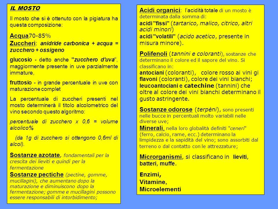 Nebbiolo Sinonimi: Chiavennasca, Spanna, Marchesana, Picotendre, Prunenta, Malasca.