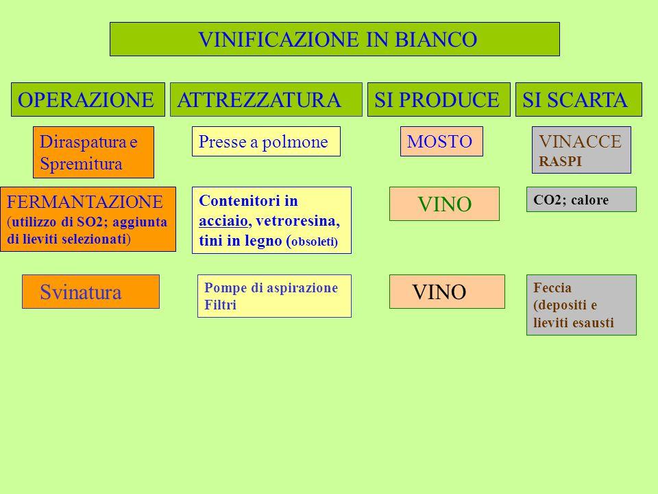 VINIFICAZIONE IN BIANCO OPERAZIONESI PRODUCEATTREZZATURASI SCARTA Diraspatura e Spremitura Presse a polmoneMOSTOVINACCE RASPI FERMANTAZIONE (utilizzo di SO2; aggiunta di lieviti selezionati) Contenitori in acciaio, vetroresina, tini in legno ( obsoleti) VINO CO2; calore Svinatura Pompe di aspirazione Filtri VINO Feccia (depositi e lieviti esausti