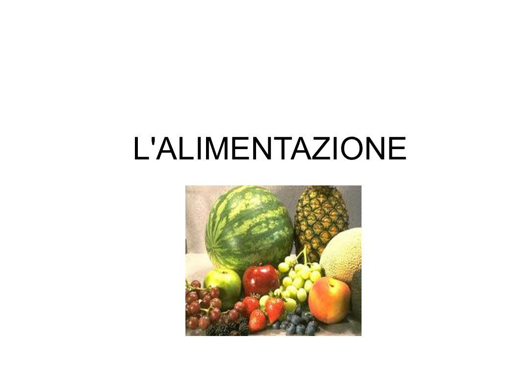 PRINCIPI NUTRITIVI: proteine: funzione costruttiva zuccheri: funzione energetica lipidi o grassi: funzione energetica maggiore di quella degli zuccheri vitamine: funzione di regolazione del metabolismo sali minerali: funzione plastica e regolatrice (calcio per rinforzare le ossa e per la contrazione dei muscoli); importanti sono gli oligoelementi come iodio, fluoro, zinco, cromo acqua: sostanza fondamentale per la vita in quanto quasi tutte le reazioni chimiche si svolgono nell acqua e l organismo ne contiene una quantità pari al 65%