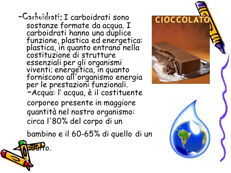 - Carboidrati: I carboidrati sono sostanze formate da acqua. I carboidrati hanno una duplice funzione, plastica ed energetica: plastica, in quanto ent